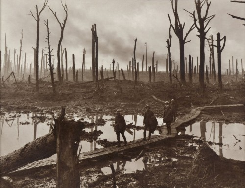 Chateauwood