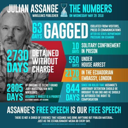 Julian Assange WikiLeaks Publisher - The Numbers